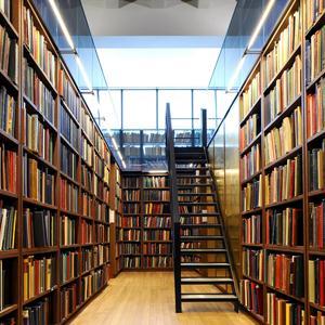 Библиотеки Степного